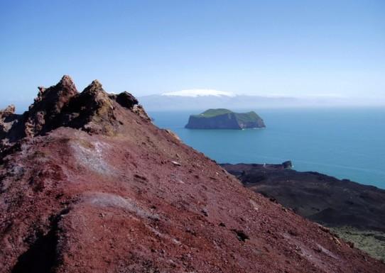 Развитие флоры и фауны вулканических островов Исландии
