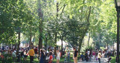 Мэдисон-сквер-парк – это не только достопримечательность Манхэттена. Это также популярное место, где размещено множество больших временных художественных инсталляций, которые добавляют еще больше стиля к городскому пейзажу.