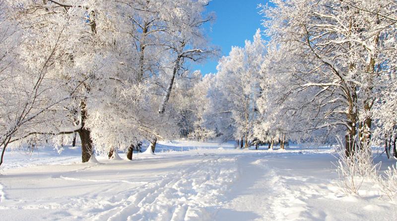 Куда поехать в отпуск в декабре