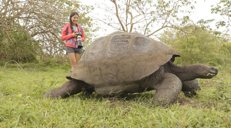 Советы что делать и как организовать свой отдых на Галапагосских островах