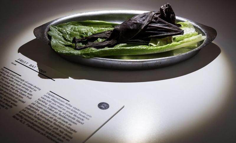 Музейный экспонат отвратительной еды