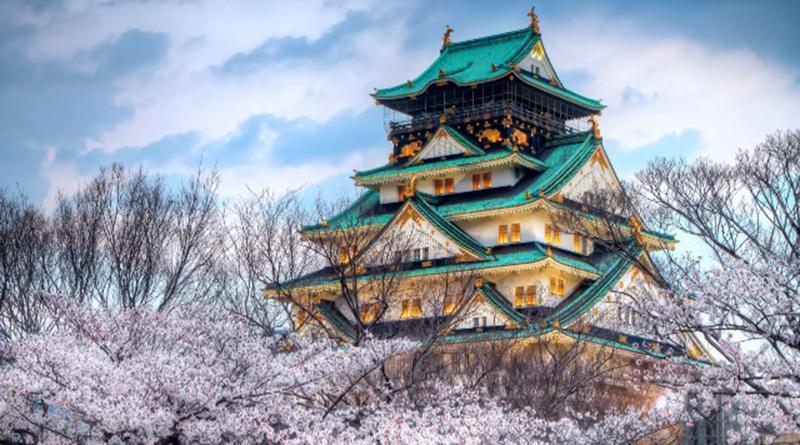 Несвоевременное цветение сакуры в Японии