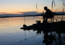 Как необычно ловят рыбу в разных странах