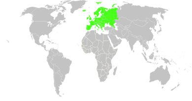 Летом Европа популярна среди туристов со всего мира