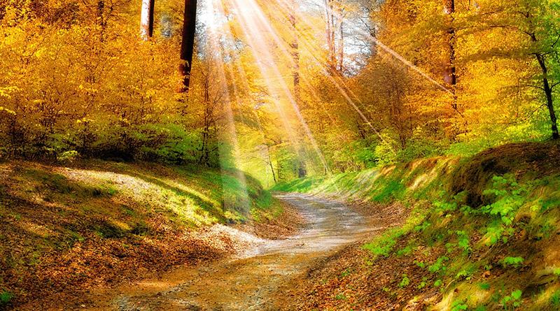 Куда поехать в путешествие осенью