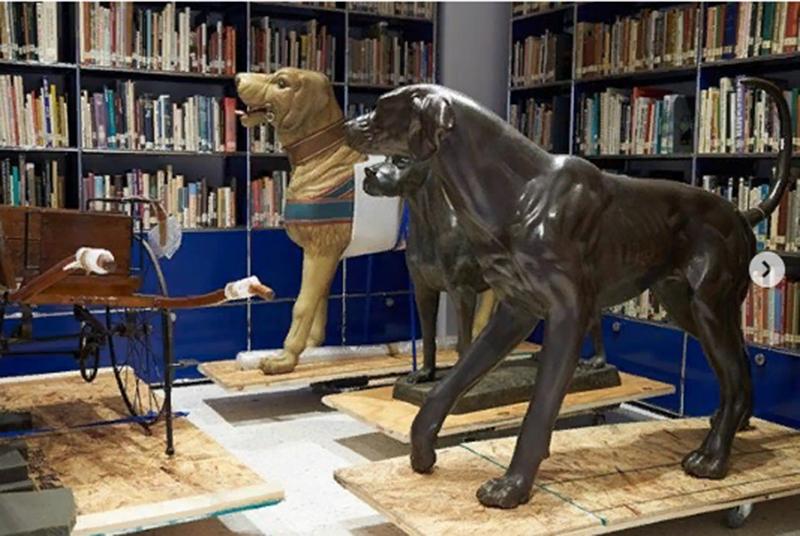 Для образовательно настроенных людей в музее собак есть библиотека.