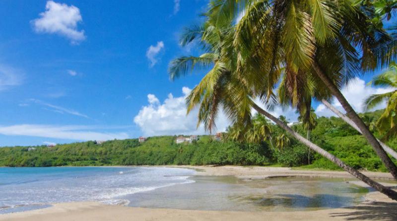 Даже несмотря на то, что зимние холода еще не наступили, к середине ноября, скорее всего, вы будете мечтать о мягком песчаном пляже где-нибудь в Карибском море. Может быть, с вулканом на заднем плане, может быть, с дельфинами, прыгающими перед вами.