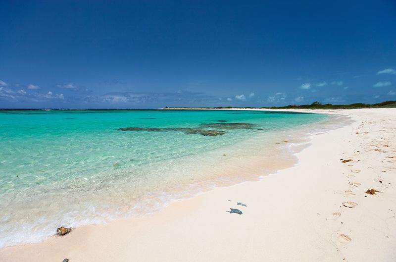 Лучшим среди пляжей на Анегаде на Британских Виргинских островах является залив Лоблоли, который, несмотря на многочисленные включения в списки лучших пляжей мира, редко полон людей. Он полон нетронутого песка с гамаками и навесами от солнца.