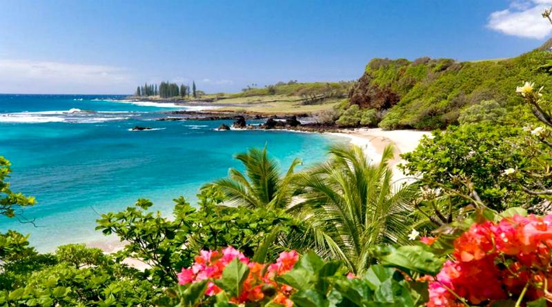 Гавайи – это идеальное место для отдыха мечты. С бесконечными пляжами, таинственными горами и вечным чувством романтики, витающим в воздухе.