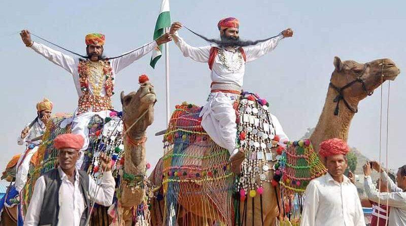 В Раджастане, на северо-западе Индии, верблюды – это не просто обитатели пустыни: они уже давно являются источником дохода, транспорта, безопасности, статуса и даже товарищества для раджастанцев